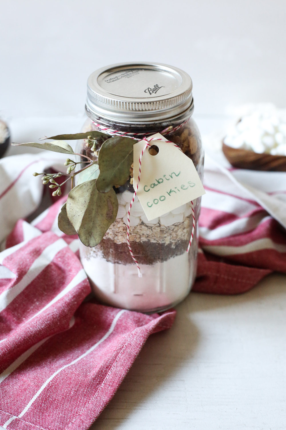CAMPFIRE COOKIES IN A JAR -