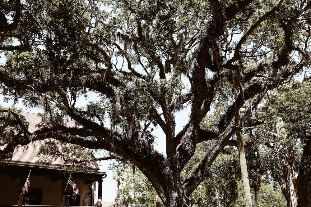 St. Augustine Florida1.jpg