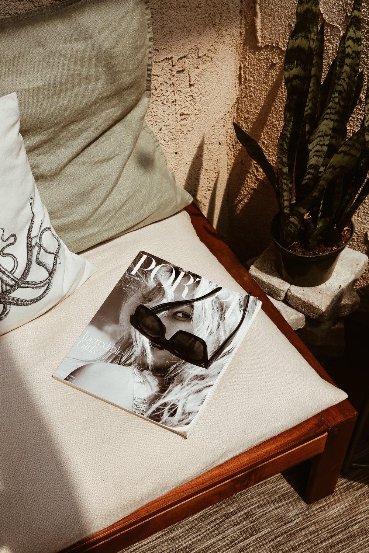 snake plant linen pillows porter magazine.jpg