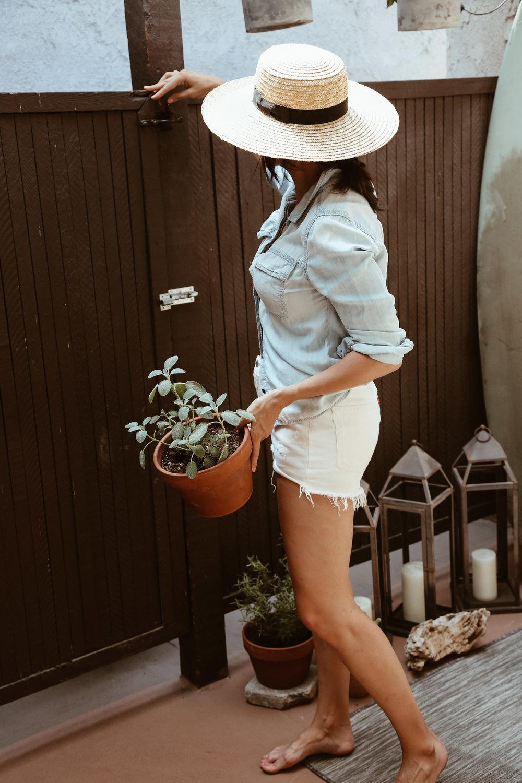 small space gardening.jpg