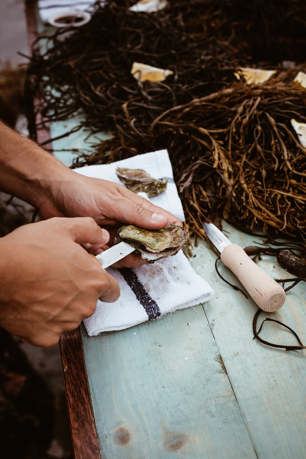 oyster day in Maine-38.jpg
