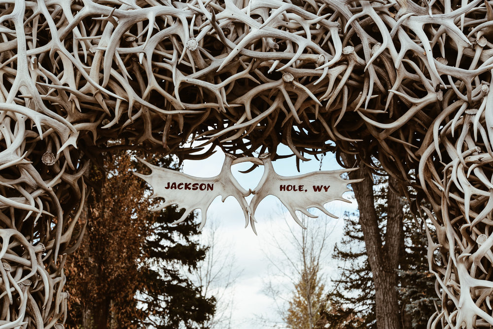Infamous arches around Jackson Hole created from antlers that have been shed by the elk on the elk refuge