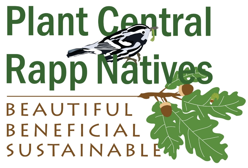 Plant-Central-Rapp-Natives-Logo---high-res.jpg