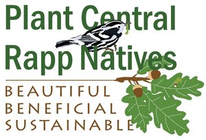 Plant-Central-Rapp-Natives-Logo---high-res.jpg