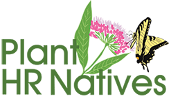 The logo features Swamp Milkweed,  Asclepias incarnata  and Eastern Tiger Swallowtail,  Papilio glaucus .
