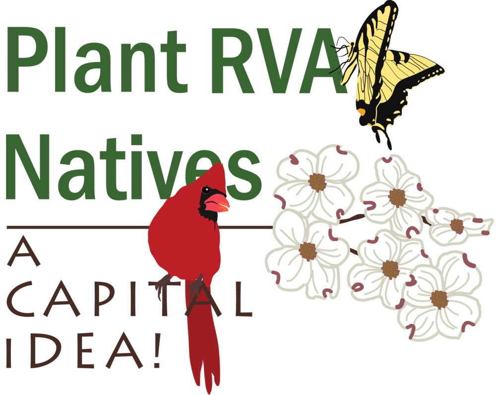 Plant-RVA-Natives---A-Capital-Idea-Logo.png