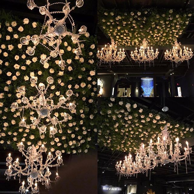 We are still obsessing over our blooms and greenery in this epic ceiling installation created by @cle_events_rentals for Taisha and Samuels enchanting wedding Reception last Saturday