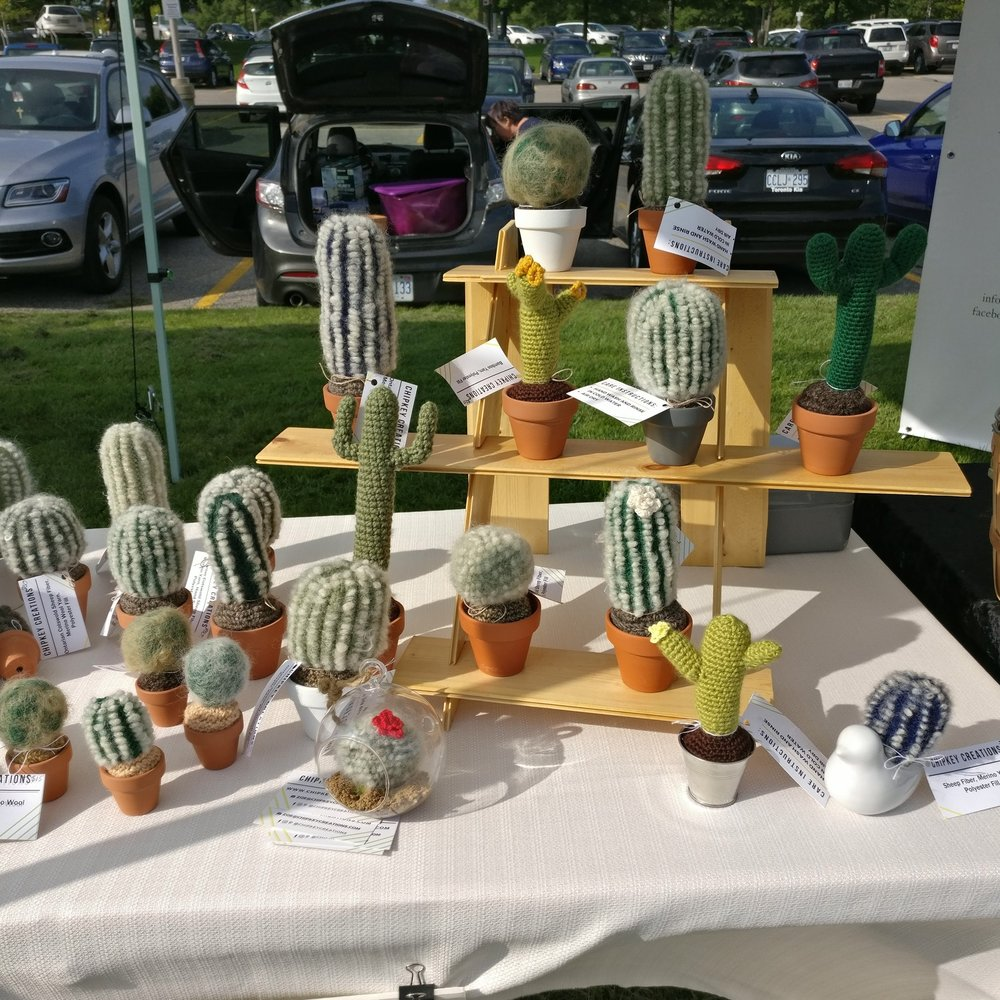 Cactus Set Up