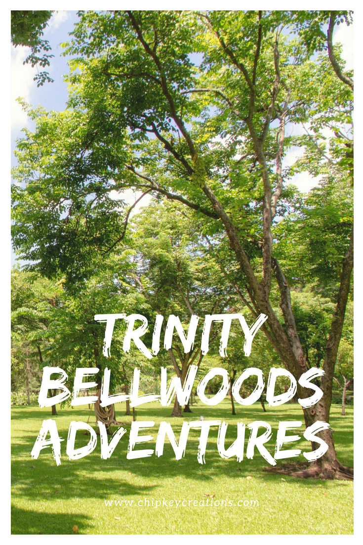 trinity bellwoods adventure 2018