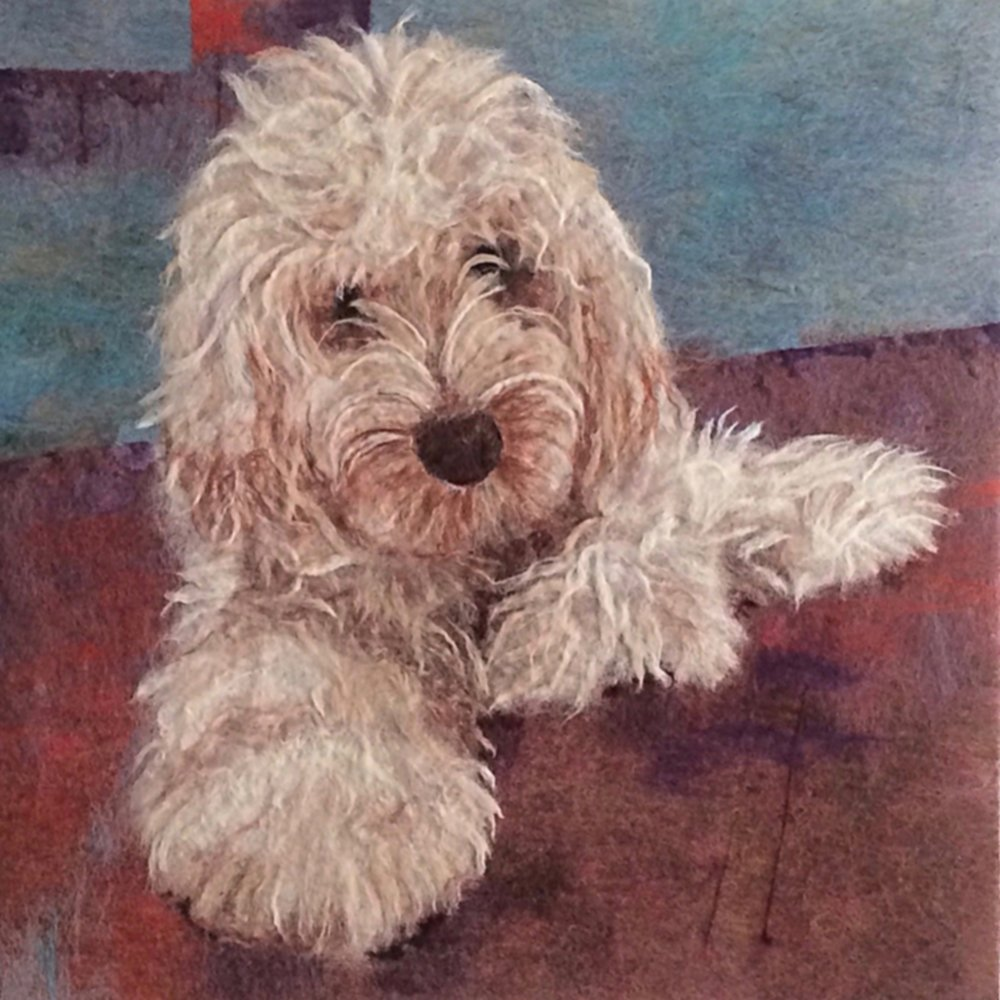 Formal portrait of Eddie the Cockapoo 61cmx61cm