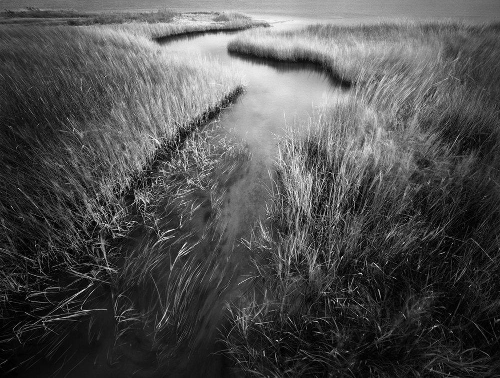 Meandering Estuary