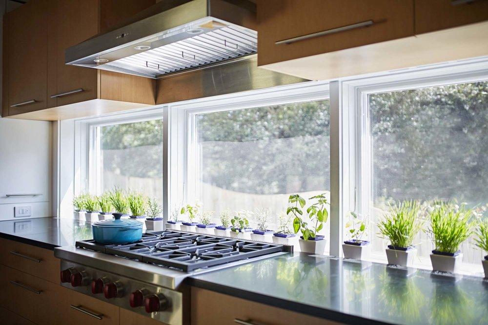kitchen-baksplash-windows-interior-design-charlottesville.jpg