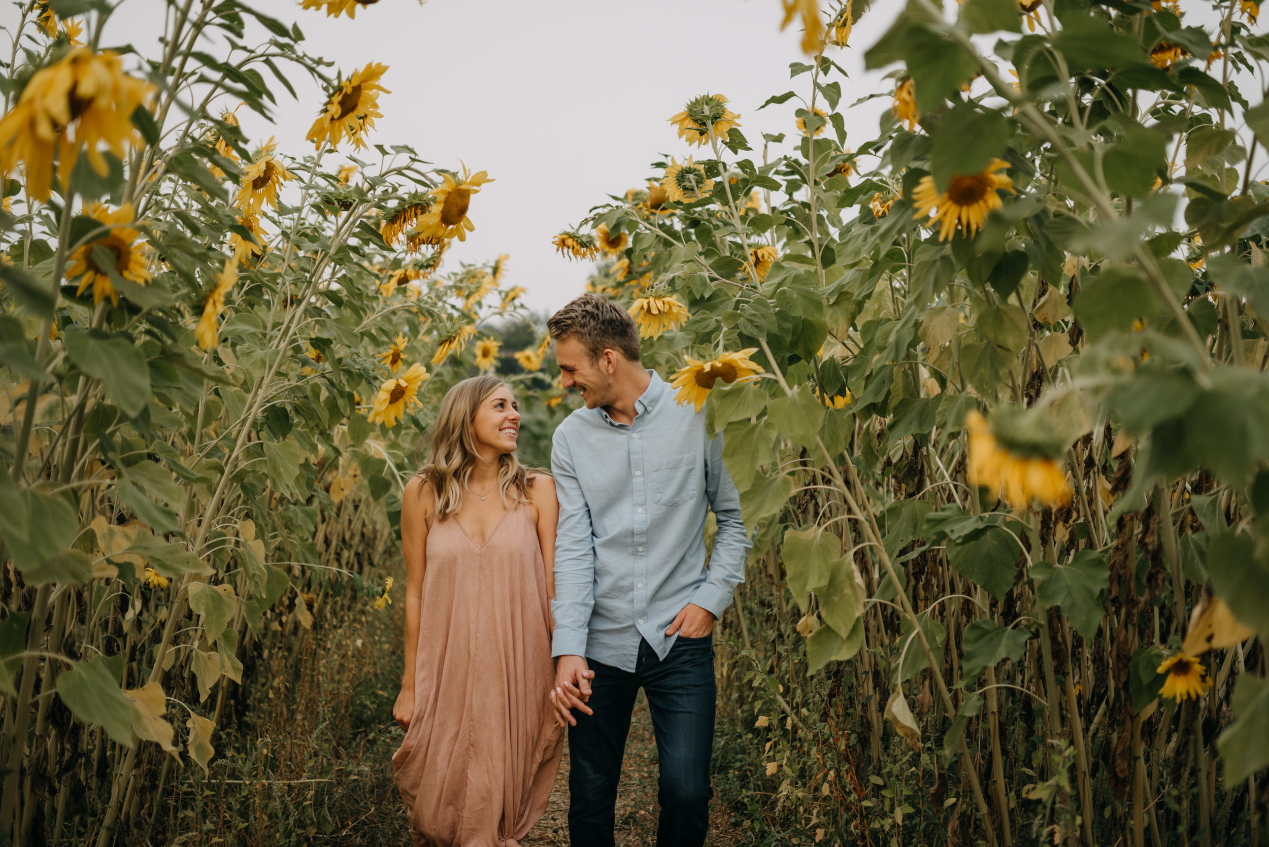 Sauvie-Island-Oregon-Sunflower-Portland-Engagement-3966.jpg