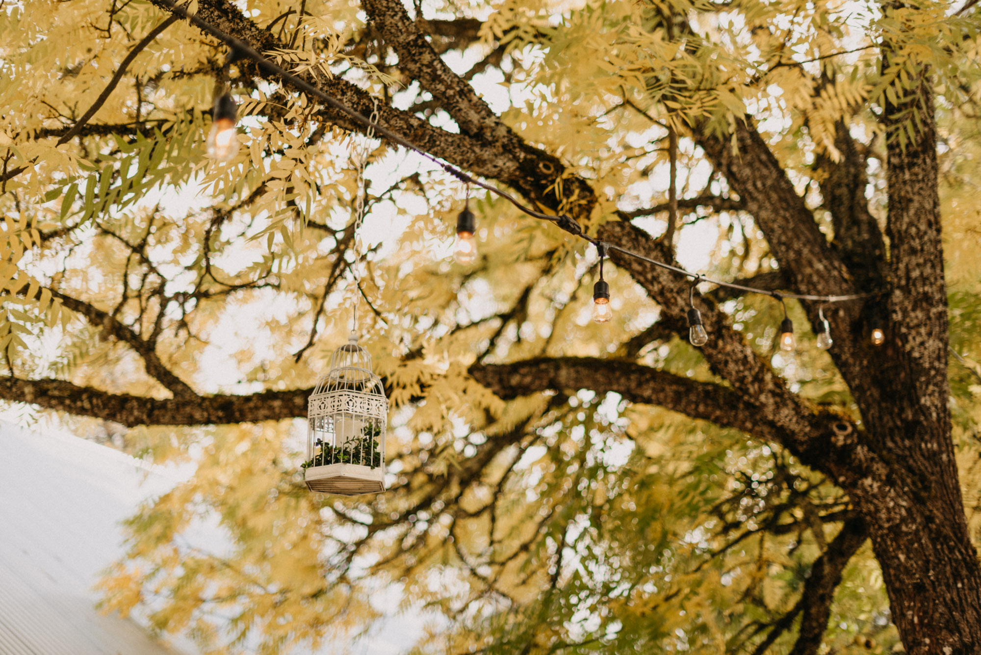 Getting-Ready-Swingset-Washington-Wedding-ringshot-8810.jpg