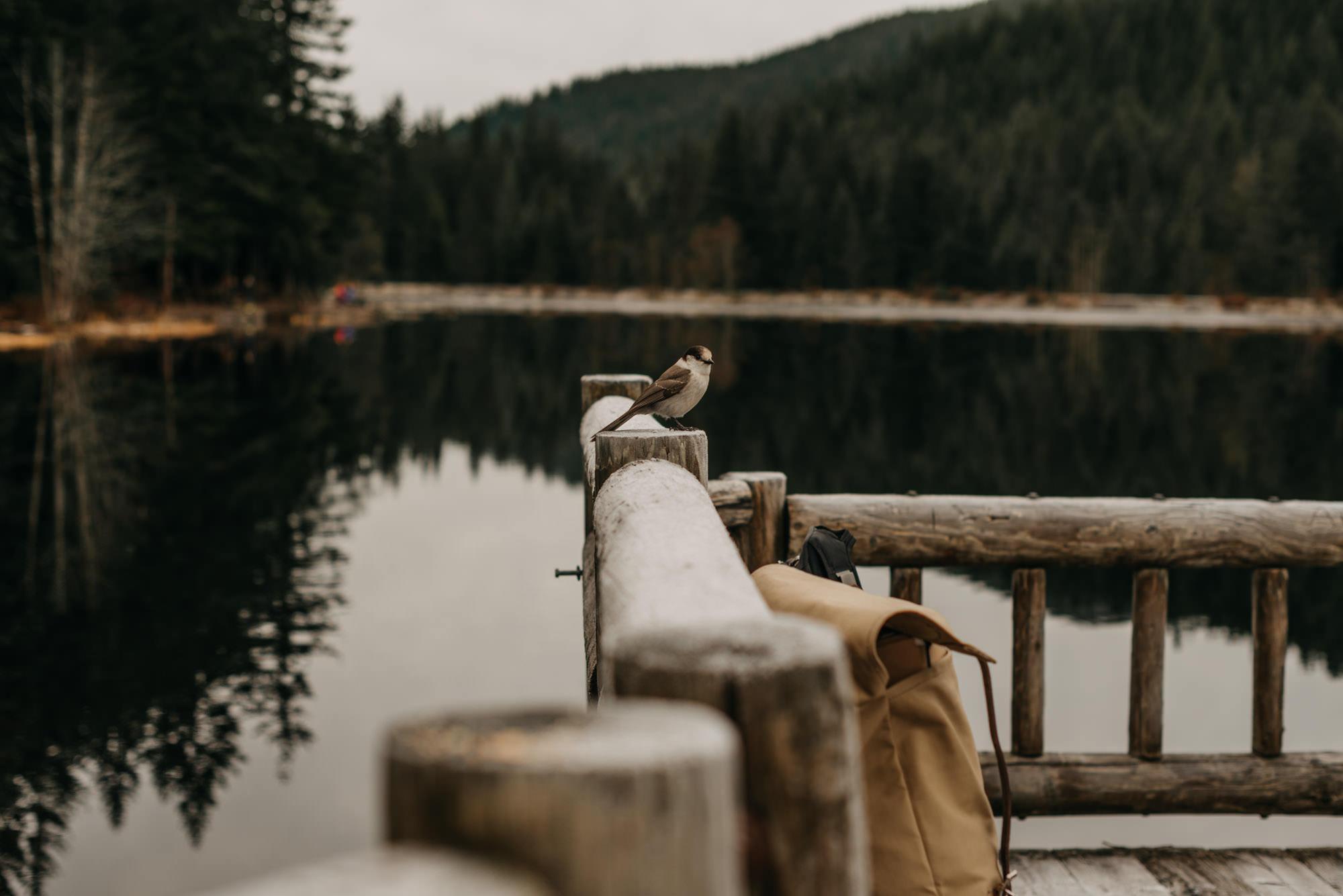 mt-hood-lake-trillium-engagement-session-woods-8624.jpg