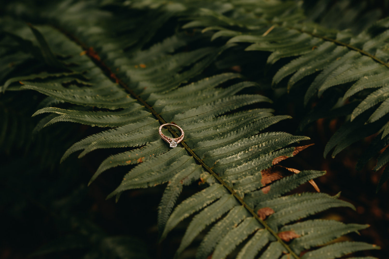 Engagement-portland-session-federico-hoyt-arborteum-trees-40.jpg