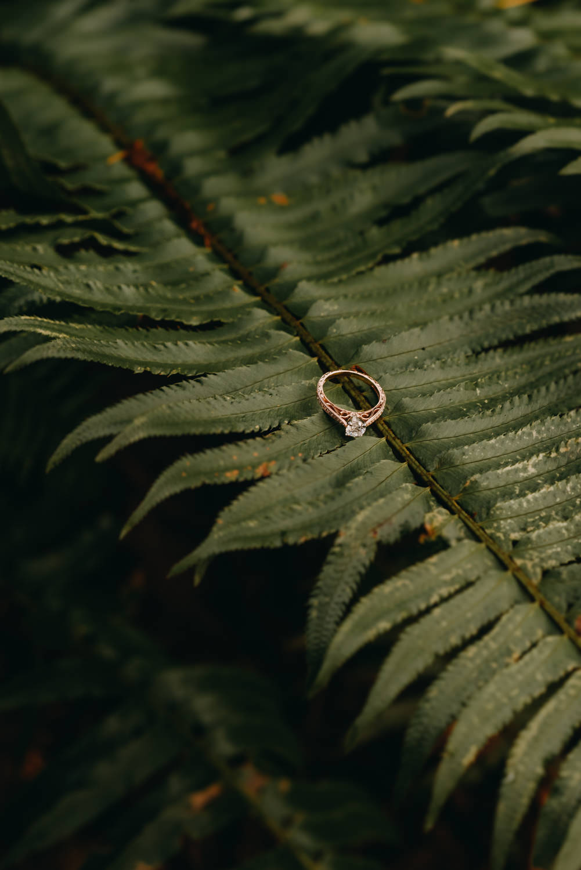 Engagement-portland-session-federico-hoyt-arborteum-trees-41.jpg