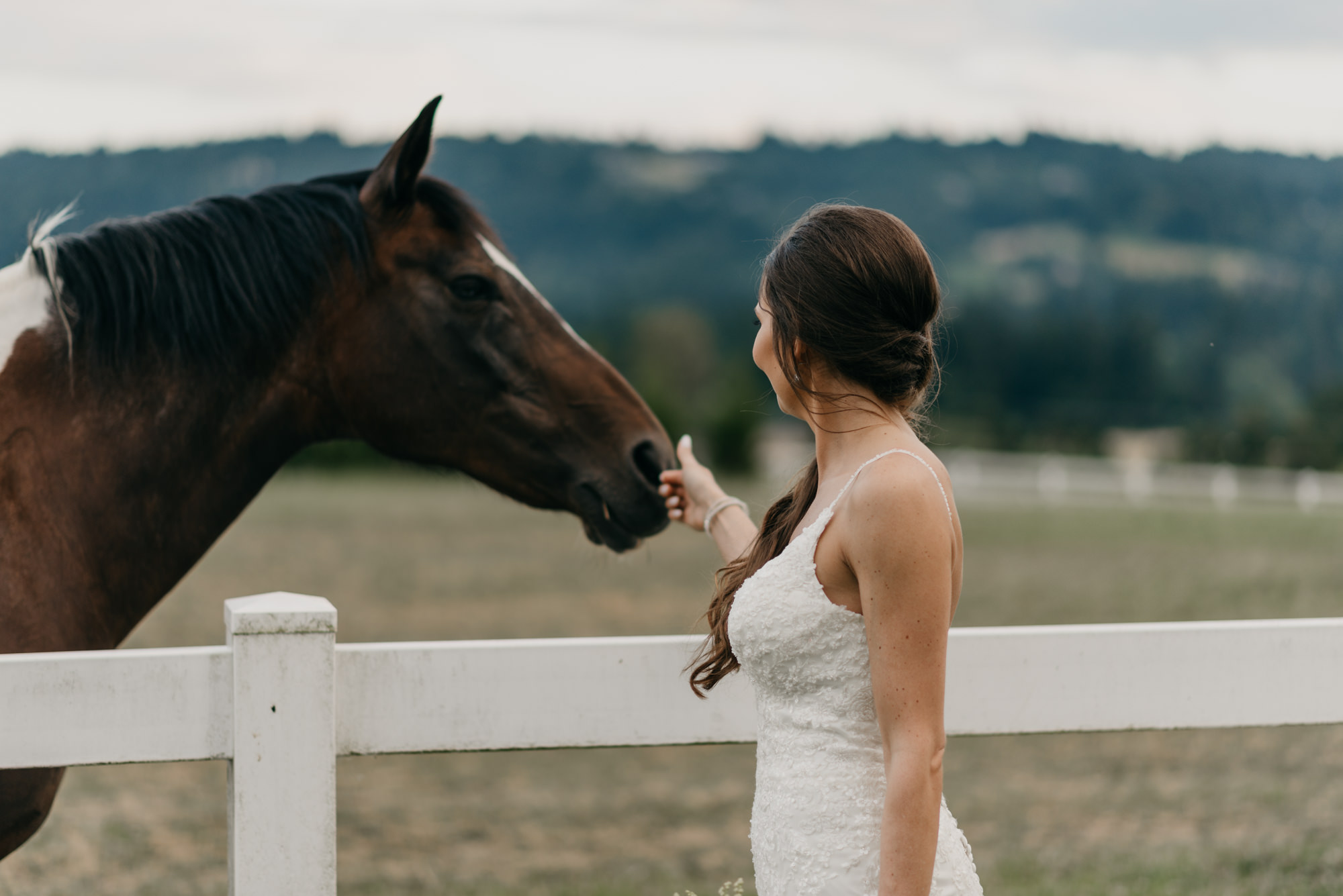 189-barn-kestrel-portland-northwest-horse-sunset-wedding.jpg