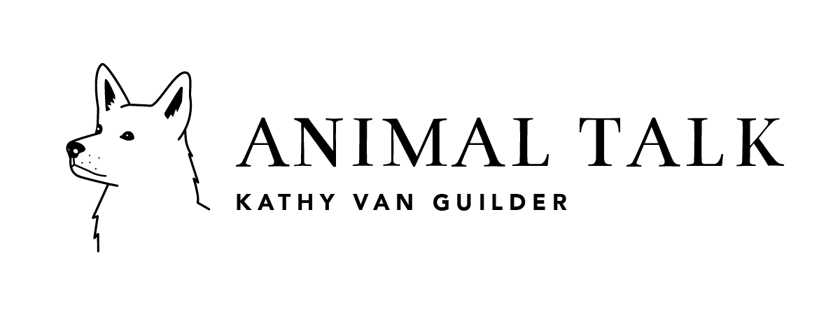 Kathy Van Guilder  Animal Talk