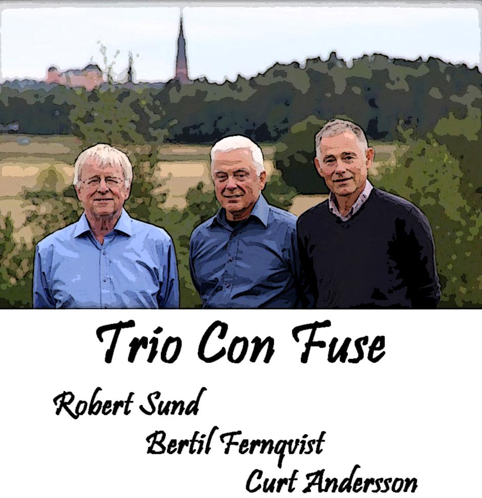Trio_Con_Fuse 1.jpg