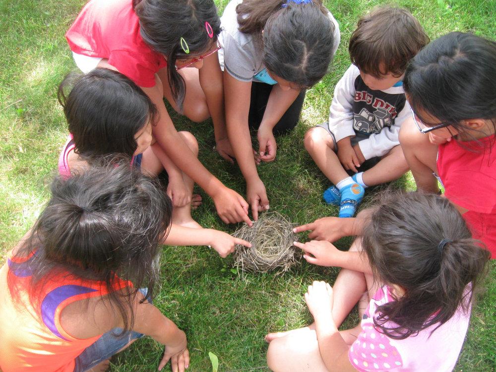 Niños aprendiendo sobre las puertas y la naturaleza.
