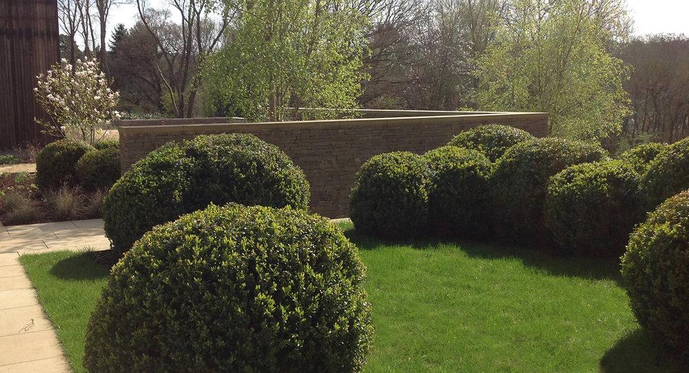 Surrey garden K.jpg