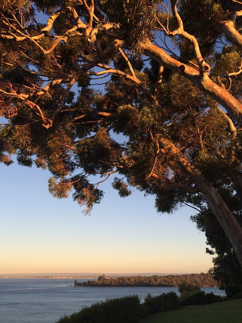 JHS inspiration  (57) - Western Australia.jpg