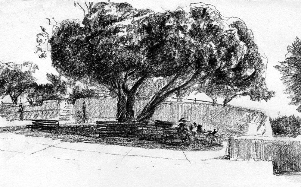 JHS inspiration  (81) - sketchbook - Rottnest.jpg