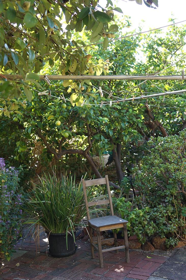 JHS inspiration  (108) - Nanna's garden.jpg