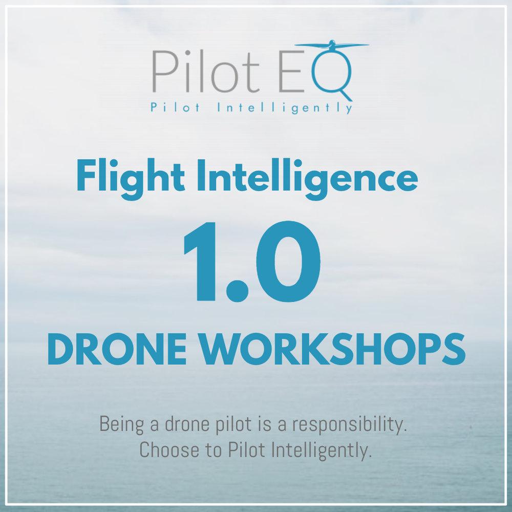 FI 1 Drone Workshop AD CARD.jpg