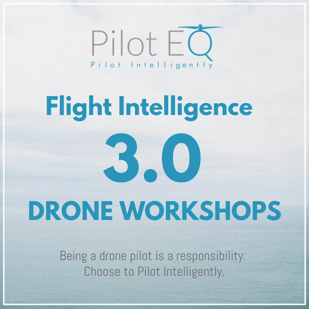 Flight Intelligence Drone Workshops PILOT EQ