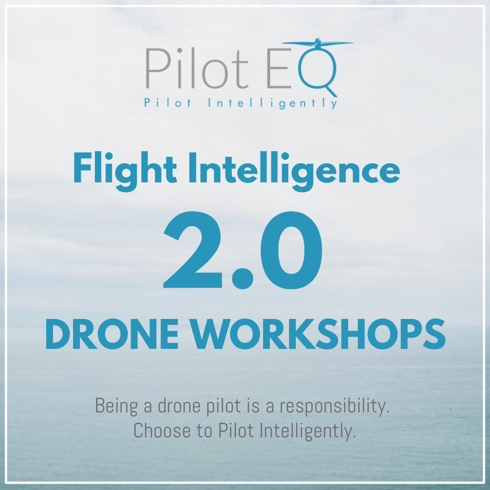 FlightIntelligence_2_PilotEQ.jpg