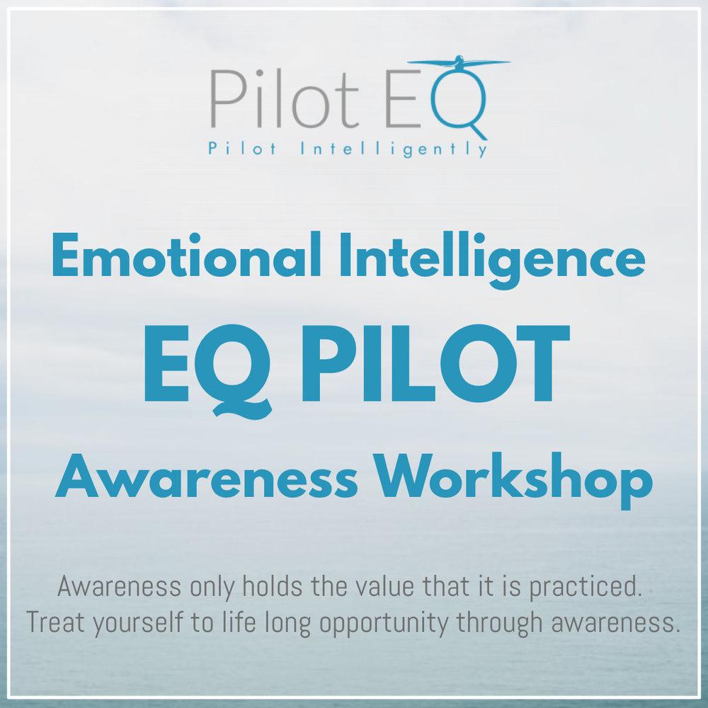 EQ Pilots Awareness Workshop.jpg
