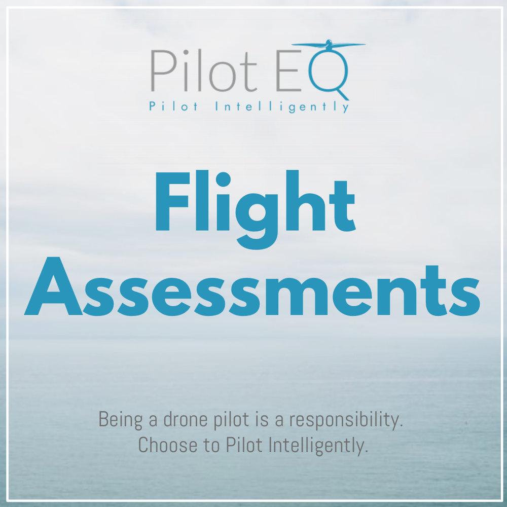 FlightAssessments_PilotEQ.jpg