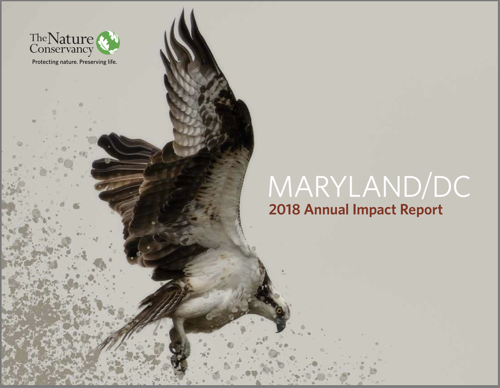The Nature Conservancy Maryland/DC 2108 Annual Impact Report
