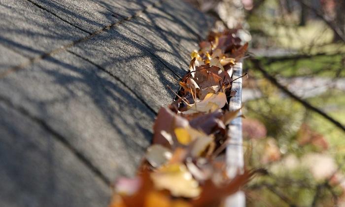 leafy gutters.jpg