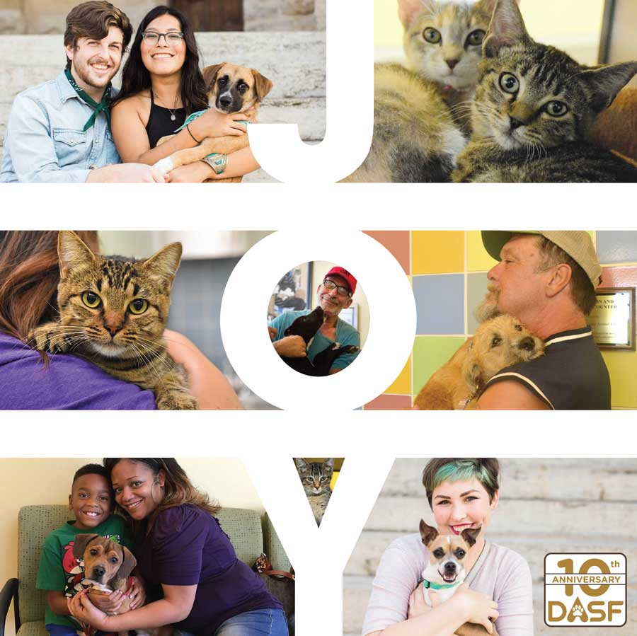 Collage of happy forever-families and the word JOY