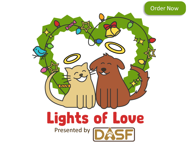 Lights of Love logo and a rectangle that says Order Now