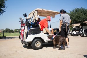 A man leans out of a golf cart to pet a dog on a leash