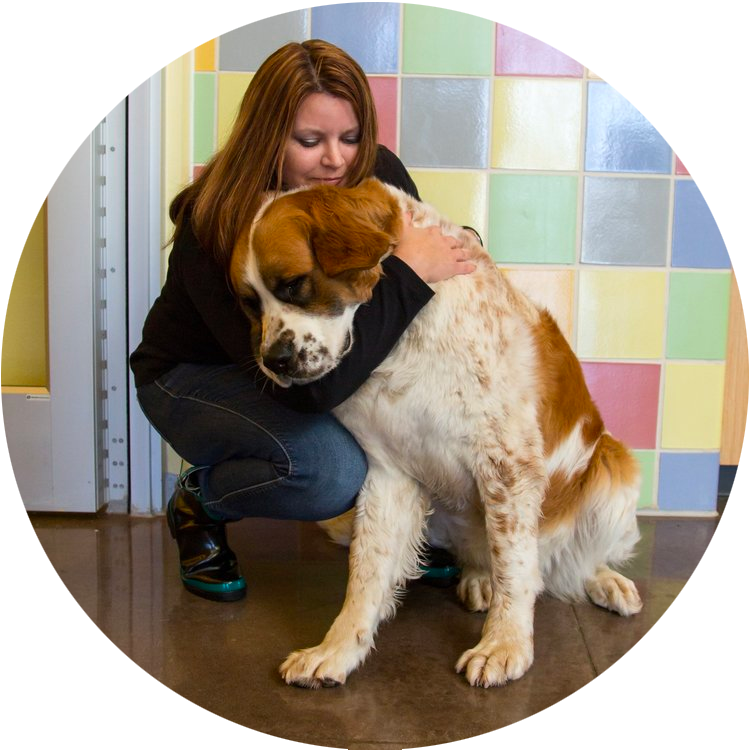 A woman hugs a large dog inside the shelter