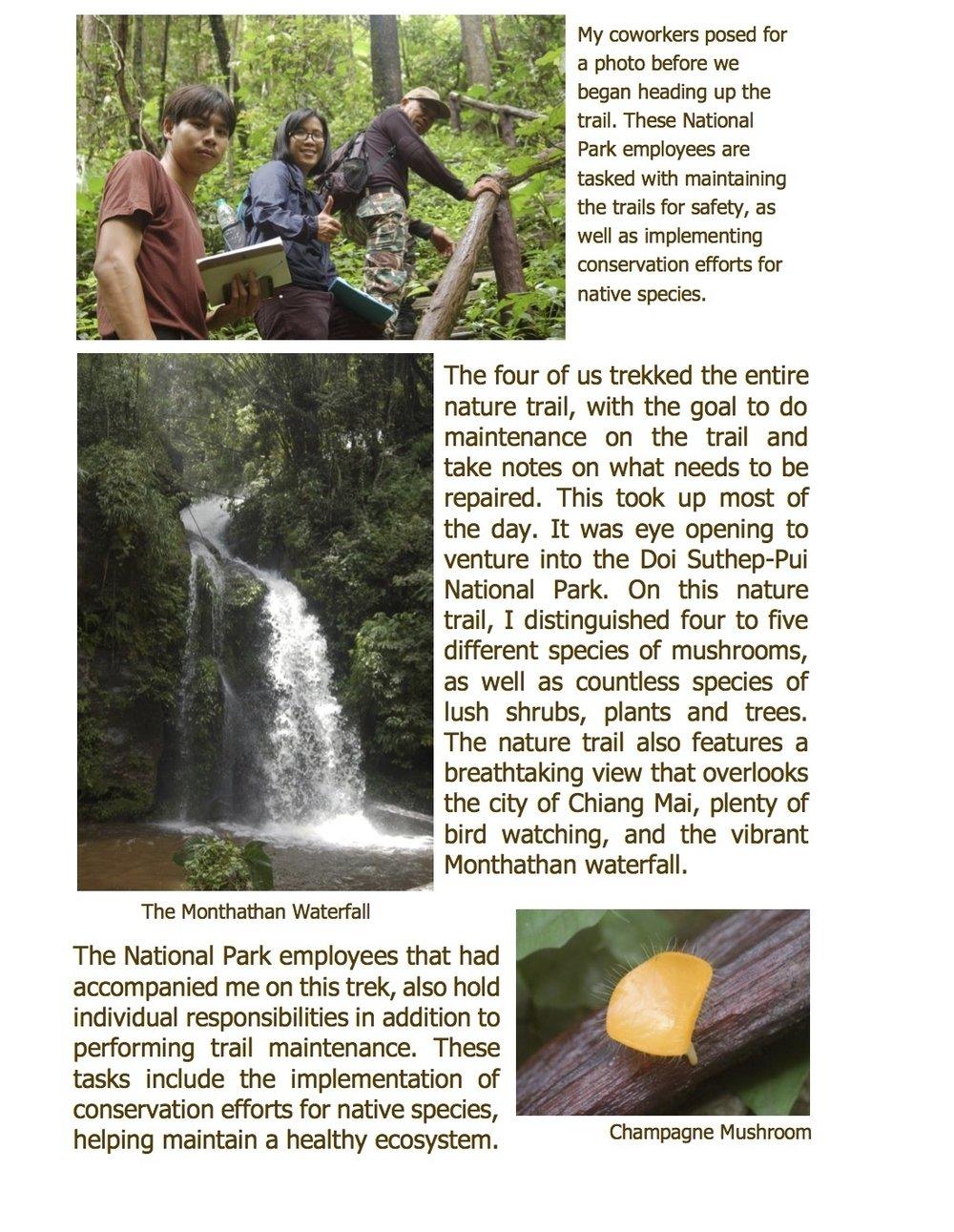 #2 Weekly Recap of Doi Suthep pg2.jpg