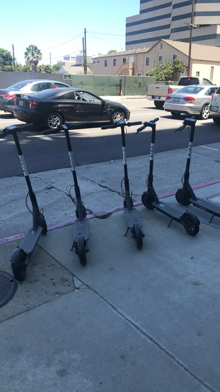 Walked out of the office for a lunch break and saw a bunch of bird scooters on the sidewalk. Would you call this a flock?