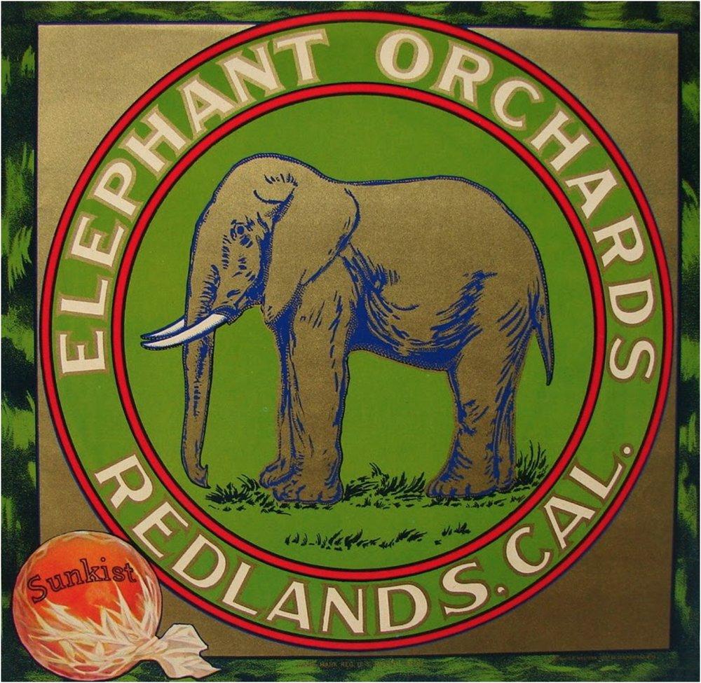 ElephantOrchardLabel.jpg