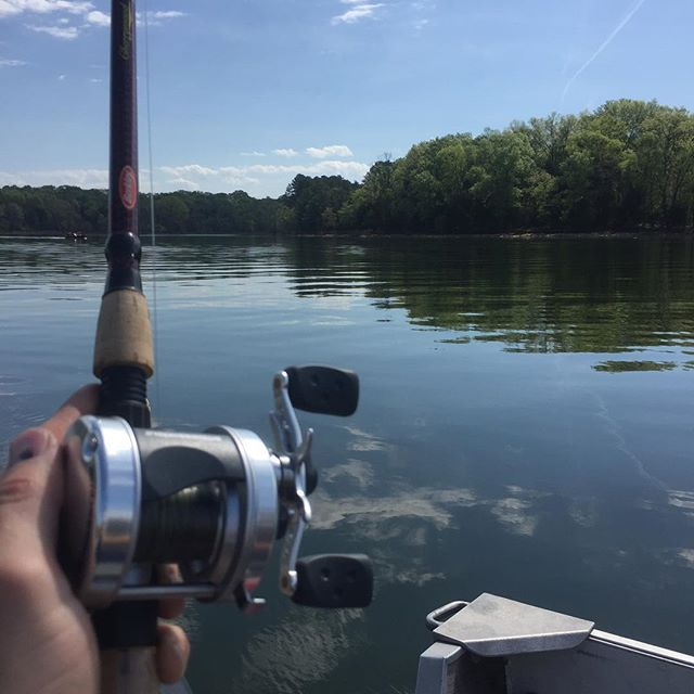 Here fishy fishy. #tnfishing