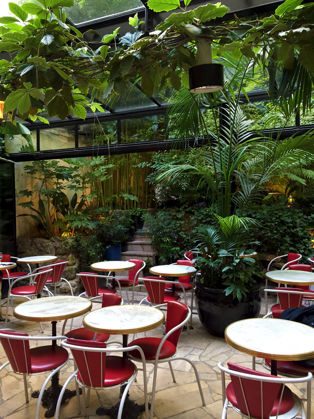 A luxurious garden, filled with lush greenery, under a glass roof. Very popular for brunch. Peaceful in the early evening for a before dinner drink.