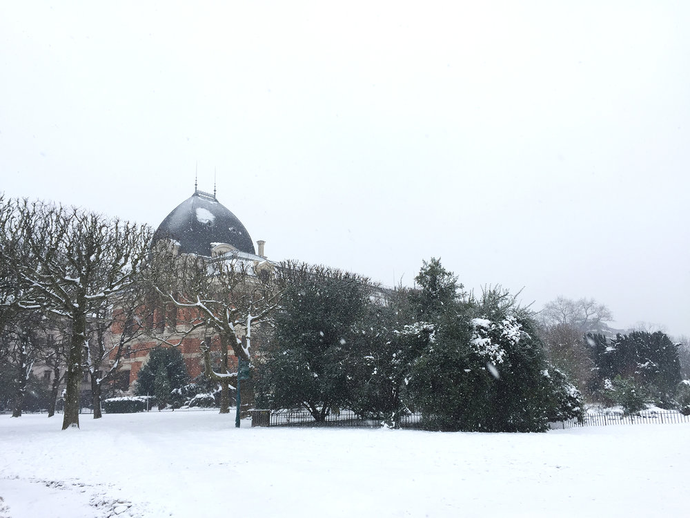A heavily blanketed Jardin des Plantes