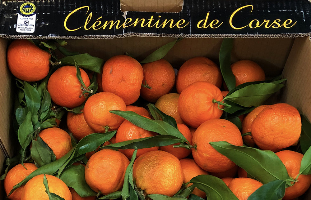 Clementines from Corsica