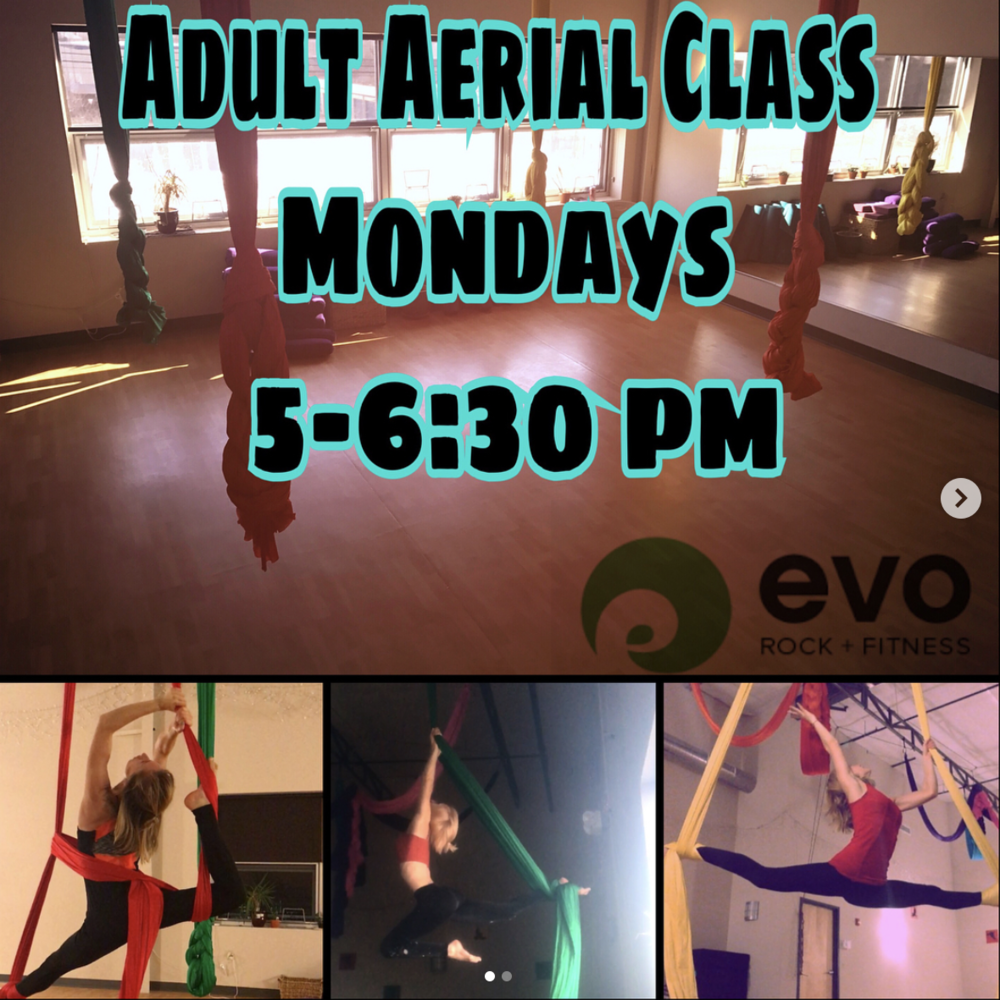 beginner-aerial-classes-evo-rock-gym.png