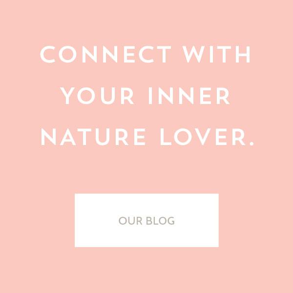bloglink.jpg