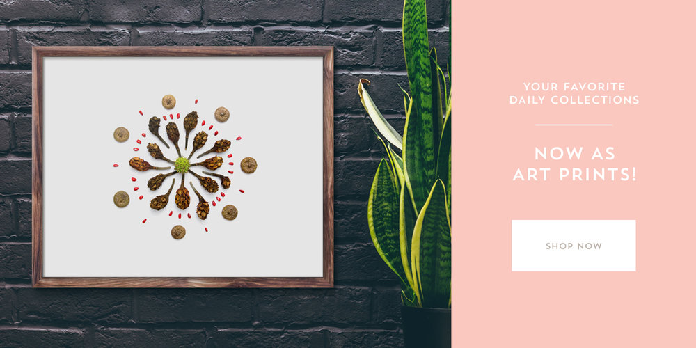 Little Treasures Project | Art Prints Now Available